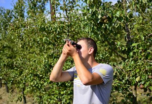 Refractometer analysis of fruit juice